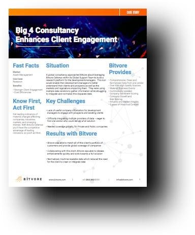 Big 4 Consultancy